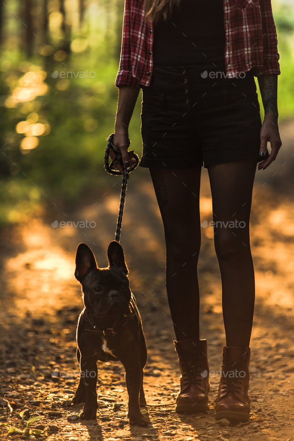 Young woman walking french bulldog in forest at sunset - Stock Photo - Images