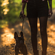 Young woman walking french bulldog in forest at sunset - PhotoDune Item for Sale