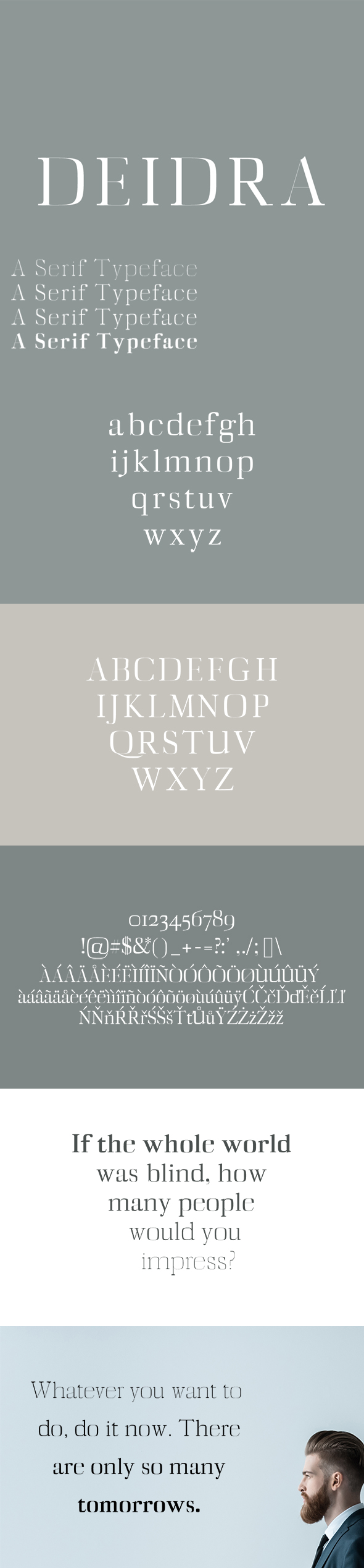 Diedra Serif Typeface - Serif Fonts