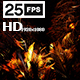 Jungle Palms 03 HD - VideoHive Item for Sale