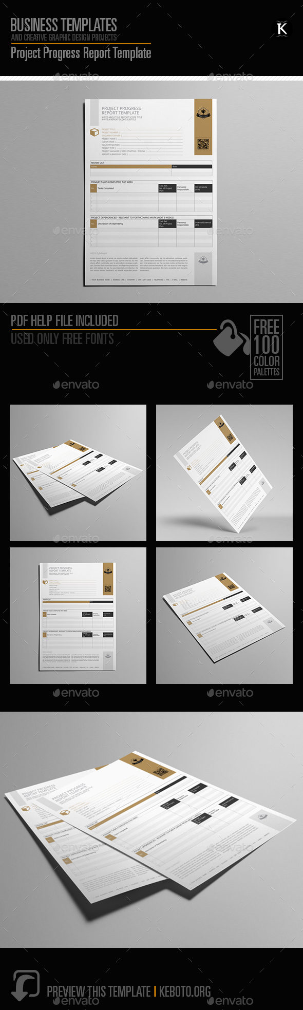 GraphicRiver Project Progress Report Template 20471293
