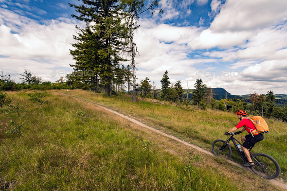 Mountain biker riding MTB in mountains and woods - Stock Photo - Images