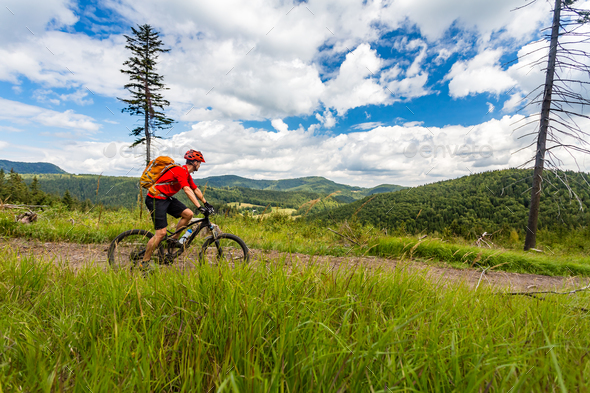 Mountain biking man riding in woods and mountains - Stock Photo - Images