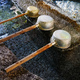 Water dipper at japanese shrine, Tokyo, Japan - PhotoDune Item for Sale
