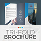 Tri-Fold Brochure Template 11 - GraphicRiver Item for Sale