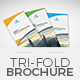Trifold Brochure Template 12 - GraphicRiver Item for Sale