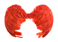 Red artificial angel wings.