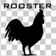 Rooster Silhouette Animation