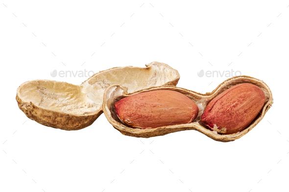 Peanuts (Arachis hypogaea) on a white background - Stock Photo - Images