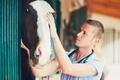 Veterinary medicine at the farm