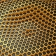 Background of Animated Hexagons - VideoHive Item for Sale