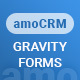 Gravity Forms - amoCRM - Lead Generation