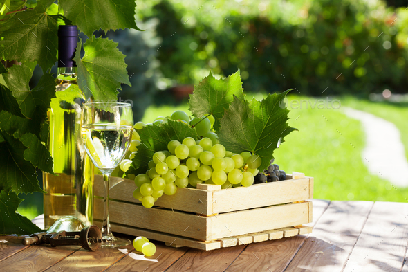White wine bottle, glass, vine and grapes