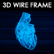 Human Heart 3D Wire Frame