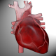 Heart Arrhythmias Pack