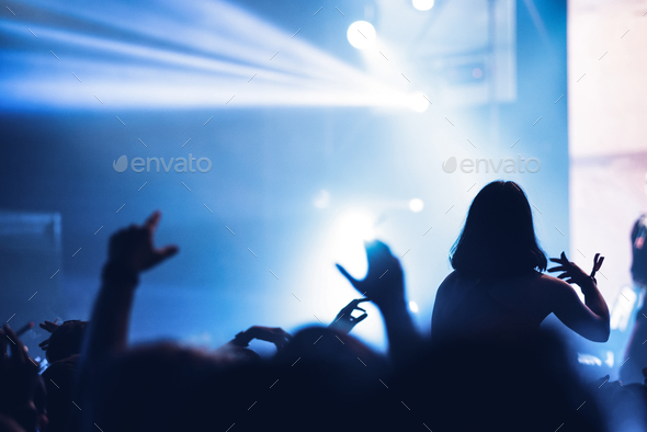 Partying crowd at a live electronic dance music concert
