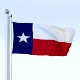 Animated Texas Flag