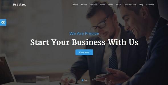 Precize-One Page Multipurpose Template - Corporate Site Templates