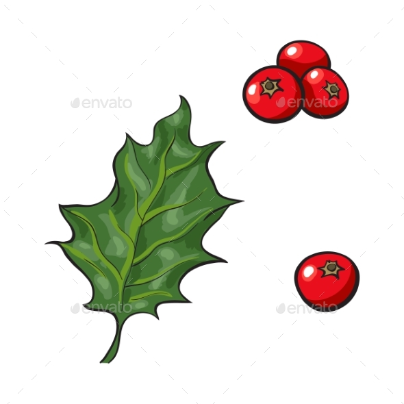 GraphicRiver Mistletoe Leave and Red Berries Holly Berry 20486909