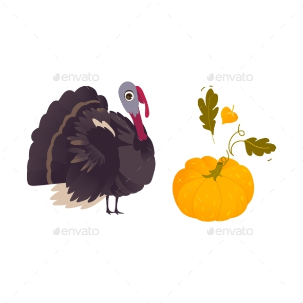 Farm Hen Turkey and Ripe Orange Pumpkin - Miscellaneous Vectors