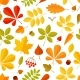 Seamless Pattern Autumn Falling Leaf Isolated