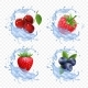 Forest Berry Juice - GraphicRiver Item for Sale
