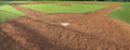 Baseball Field Panorama from Home Base