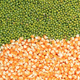Green mung beans and corn grains - PhotoDune Item for Sale