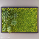 Fito wall with moss