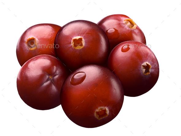 Six wild cranberries, paths
