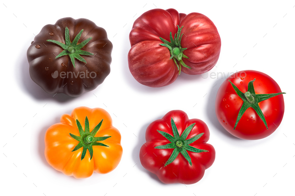 Globe and ribbed Tomatoes,  top view, paths