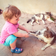 Little girl playing with cats - PhotoDune Item for Sale