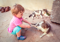 Little girl playing with cats