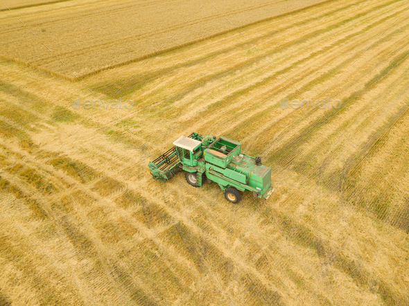 Top view combine harvester gathers the wheat at sunset. Harvesti - Stock Photo - Images