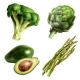 Set Of Vegetables In Realistic Style