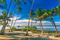 Tropical beach on Samoa Island with palm trees during late after - PhotoDune Item for Sale