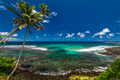 Tropical volcanic beach on Samoa Island with many palm trees - PhotoDune Item for Sale