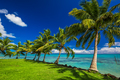Tropical beach on north side of Samoa Island with palm trees - PhotoDune Item for Sale