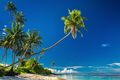 Tropical beach on south side of Samoa Island with palm trees - PhotoDune Item for Sale