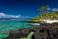 Coral reef on Upolu, Samoa Islands. - PhotoDune Item for Sale