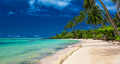 Tropical beach on south side of Upolu, Samoa Island with palm tr - PhotoDune Item for Sale