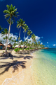 Tropical beach with with coconut palm trees and villas on Upolu, - PhotoDune Item for Sale