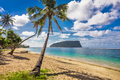 Tropical beach with a coconut palm trees and a beach fales, Samo - PhotoDune Item for Sale