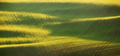 Abstract spring landscape with green fields at colorful sunset