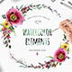 Watercolour Flower. Create Wreath - GraphicRiver Item for Sale