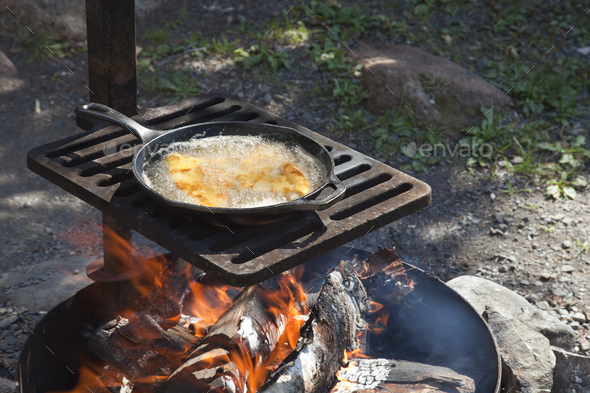 Fish Frying in a Pan on a Grill Over an Open Fire at a Campsite