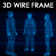 6 People N2 3D Wireframe Animation - VideoHive Item for Sale