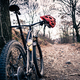 Mountain bike and helmet in autumn woods - PhotoDune Item for Sale