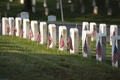 Tombstones with American Flags on Memorial Day at Arlington National Cemetery - PhotoDune Item for Sale