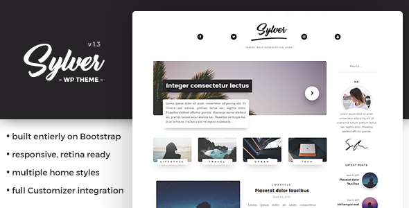 Sylver - Responsive WordPress Blog Theme